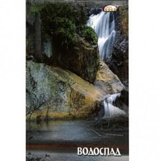 Купить Книга канцелярская А4 48л # м/о, офсет ТВ-21 по низким ценам